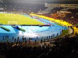 Иностранные материалы для стадионов к ЧМ-2018 заменят на российские