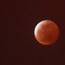 Вслед за солнечным затмением - Кровавая Луна (ФОТО)