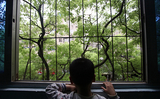 Детям с расстройствами аутистического спектра могут присвоить инвалидность