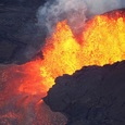 Извержения вулканов и человеческая деятельность угрожают массовым вымиранием видов