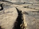 Мощное землетрясение ожидается  в Крыму в ближайшие сутки