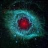 Что общего у сверхновой звезды и бактерии? (ФОТО)