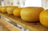 Ученые доказали, что сыр помогает контролировать уровень сахара в крови