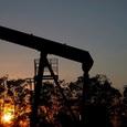 Мировые цены на нефть падают, а её запасы в США растут