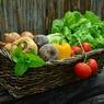 Учёные заявили о недоступности здорового питания для всех людей на планете