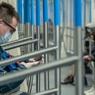 Москвичей будут штрафовать за несоблюдение дистанции в транспорте