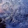 Следствие занялось сибирячкой, спьяну выставившей сына на 30-градусный мороз