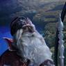 Дед Мороз из Великого Устюга посетил  «Москвариум» и открыл зимнюю навигацию