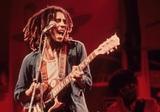 ЮНЕСКО включила музыку регги в список культурного наследия