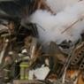 Семьи погибших при взрыве газа под Омском получат по 300 тыс. руб