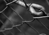 Четырнадцать заключённых в Таджикистане умерли от отравления
