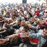 Депутат Европарламента предложил отпугивать мигрантов свиными головами