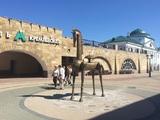 Казань встречает трехмиллионного туриста за год