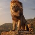 Ремейк «Короля Льва» стал самым кассовым анимационным фильмом в истории