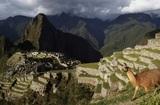 Исследователи изучили город инков, который старше, чем Мачу-Пикчу