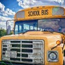 Автобус со школьниками упал в ущелье в США