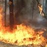 В Иркутской обрасти объявлен чрезвычайный класс пожароопасности