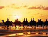 Великий шелковый путь вошел в список Всемирного наследия ЮНЕСКО