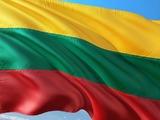 Стали известны предварительные итоги выборов президента в Литве