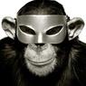В Пензе задержан грабитель, нападавший на офисы в маске обезьяны