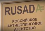 РУСАДА не будет оспаривать решение CAS о санкциях в отношении российского спорта