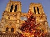 Москва отправит в Париж главную рождественскую елку