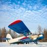 СК возбудил дело после экстренной посадки самолёта Ан-2 в лесу под Архангельском
