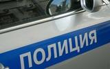 Москвич устроил танцы на крыше полицейского автомобиля и был задержан