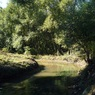 В московской реке вода нагрелась до 50 градусов