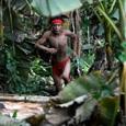 Ученые разгадали секрет амазонского племени, помогающий продлить жизнь