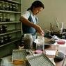 Москвичей будут лечить в клиниках тибетской медицины