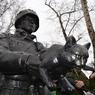 """Украинцы высмеяли """"вежливого солдата"""" с котом"""