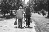 На проведение референдума о пенсионном возрасте поданы две заявки