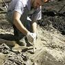 Польские археологи откопали секс-игрушку 18 века