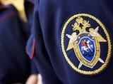 СК завел уголовное дело в связи с убийством 17-летней студентки в Домодедово