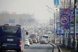 Минтранс планирует ввести новый дорожный знак к ЧМ-2018