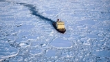 Российское судно вырвется изо льдов Антарктики не раньше 7 января