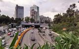 В результате землетрясения в Мексике погибло почти 250 человек
