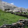 Прокуратура Дагестана доложила: случаев женского обрезания  не найдено