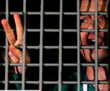 Полицейские задержали активиста, проводившего пикет у колонии Олега Навального
