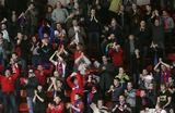 Болельщики смогут приехать на ЧЕ-2020 без виз при наличии билетов на матчи