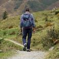 Специалисты назвали самые главные ошибки потерявшихся в походе туристов