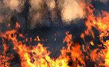 Десятилетний мальчик в Борзе Забайкальского вынес из пожара годовалую сестру