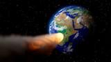 Выяснилось, как кратер от убившего динозавров астероида снова стал колыбелью жизни