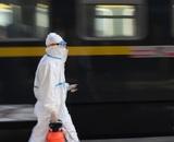 КНДР приостановила железнодорожное сообщение с Россией из-за коронавируса