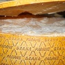 Ученые рассказали, какой сыр лучше всего снижает кровяное давление