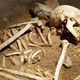 В московском парке в землянке найден скелет погибшего год назад мужчины
