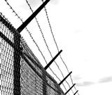 Польша тоже решила отгородиться от Лукашенко забором