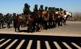 Трамп объявит ЧП на границе с Мексикой