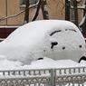 Жертвами нью-йоркского снегопада стали пять человек